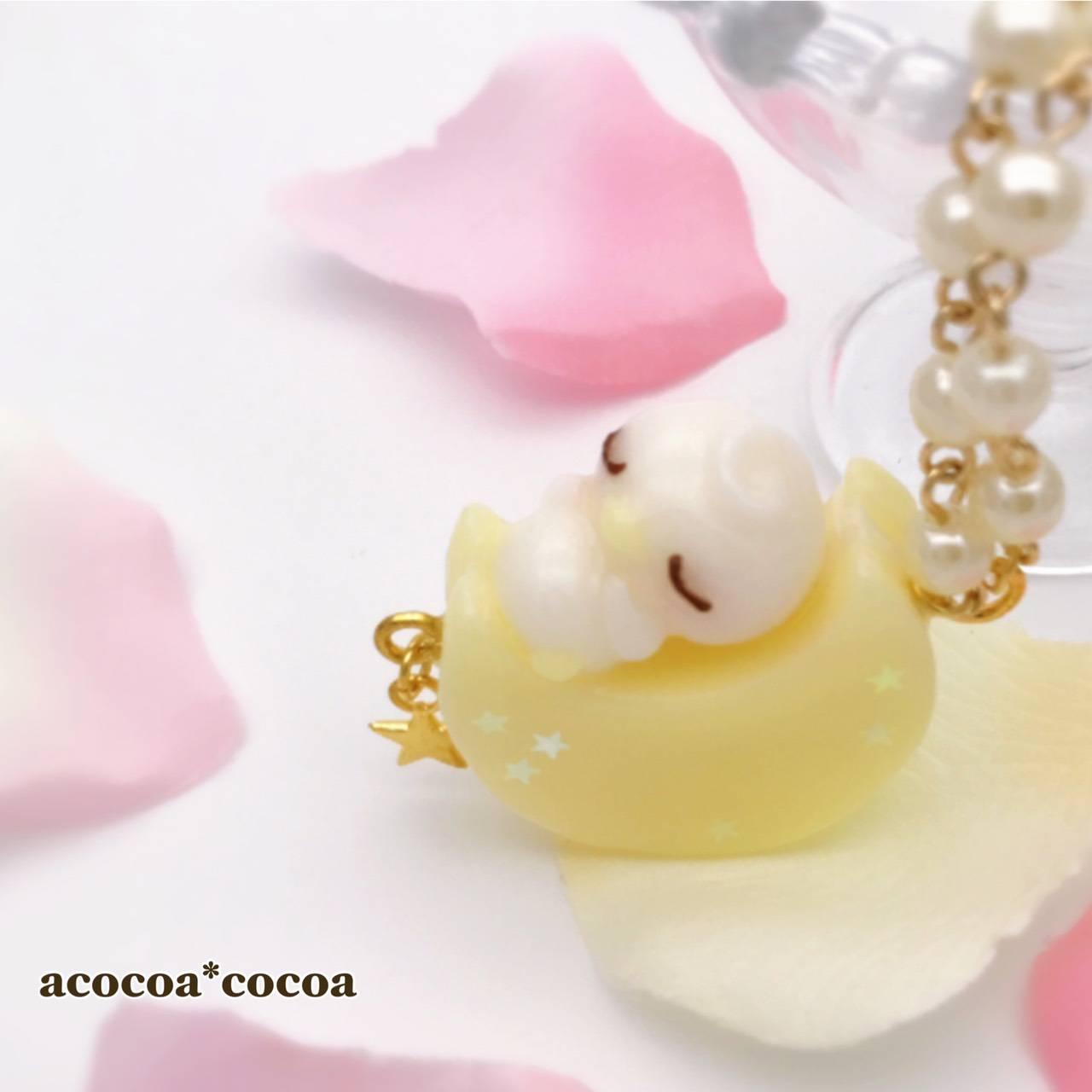 acocoa*cocoa