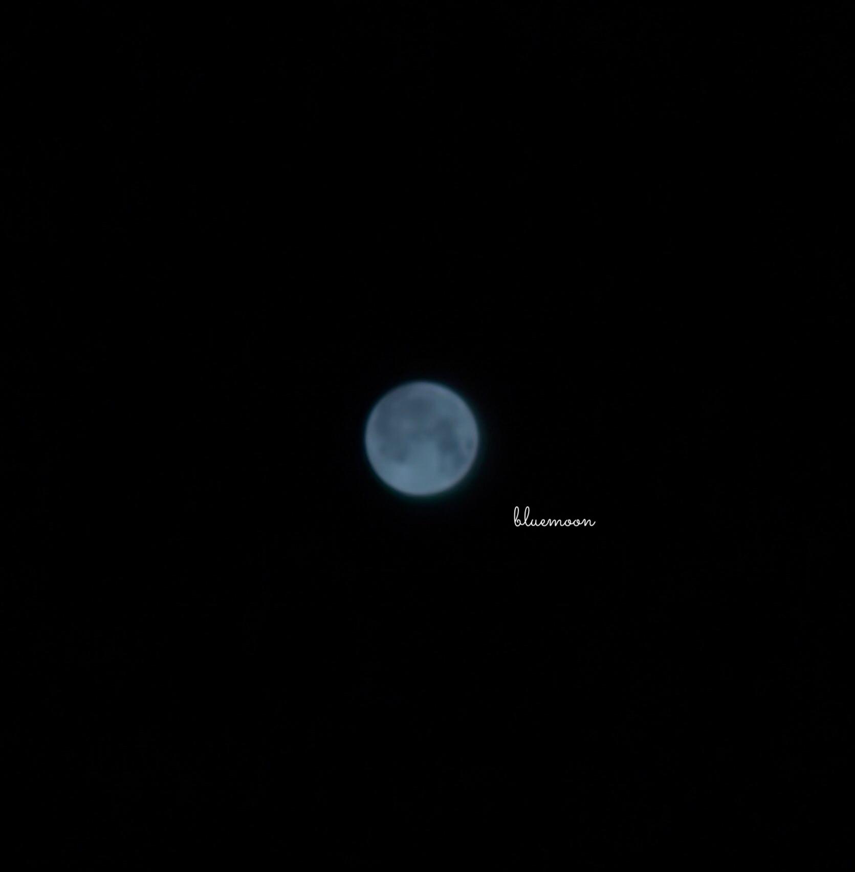 Blue Moon 🌙.*·̩͙